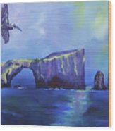 The California Brown Pelican And Acacapa Island Arch Rock Wood Print