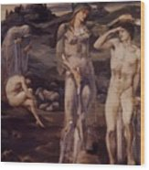 The Calling Of Perseus 1898 Wood Print