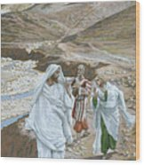 The Calling Of St. Andrew And St. John Wood Print by Tissot