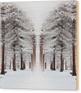 The Calm Of Winter In The Woods Wood Print