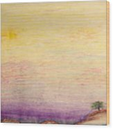 The Calm Waters Of Shallow Comfort Wood Print