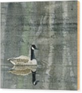 The Canadian Goose Wood Print