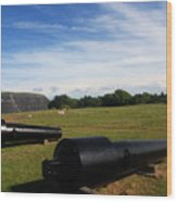 The Cannons At Fort Moultrie In Charleston Wood Print