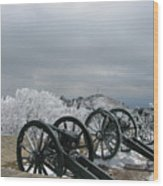 The Cannons At Shipka Wood Print