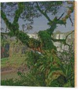 The Canopy Wood Print