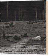 The Canyon Alphas B/w Wood Print