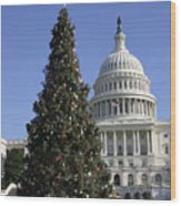 The Capitol Christmas Tree Is Decorated Wood Print