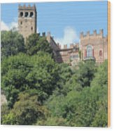 The Castle Of Camino Wood Print