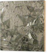 the 'Casuarina Understory' Wood Print