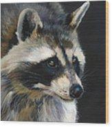 The Cat Food Bandit Wood Print