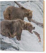 The Catch - Brown Bear Vs. Salmon Wood Print