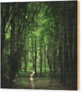 The Cathedral Arch Wood Print