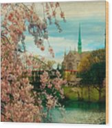 The Cathedral Basilica Of The Sacred Heart Wood Print