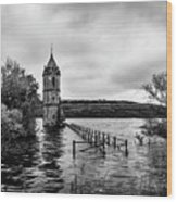 The Cathedral Of Fish Bw Wood Print