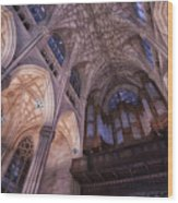 The Cathedral Of St. Patrick Wood Print