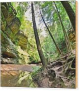 The Caves And Trail At Old Man's Cave Hocking Hills Ohio Wood Print