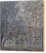 The Channal Of Loing In Spring Wood Print