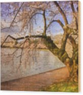 The Cherry Blossom Festival Wood Print by Lois Bryan