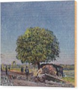 The Chestnut Tree At Saint-mammes Wood Print