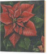 The Christmas Flower Wood Print by Jeff Brimley