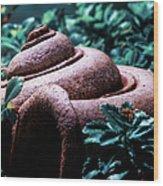The Clay Horn Wood Print