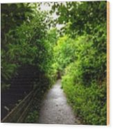 The Cliff Path At Lynton 4 Wood Print