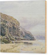 The Coast Of Cornwall  Wood Print by John Mogford