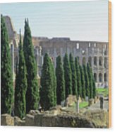 The Coliseum Wood Print