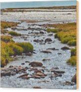 The Colorado Tundra Wood Print
