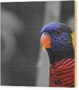 The Colorful Bird Wood Print