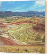 The Colorful Painted Hills In Eastern Oregon Wood Print