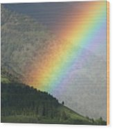 The Colors Of The Rainbow Wood Print