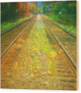 The Colour Along The Tracks Wood Print