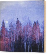 The Colours Of The Moon Wood Print