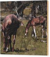 the Colt Wood Print