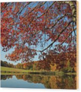 The Comfort Of Autumn Wood Print