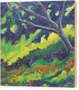The Cool Shade Wood Print