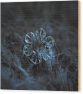 The Core, Panoramic Version Wood Print