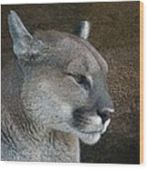 The Cougar Wood Print