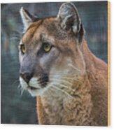 The Cougar Wood Print
