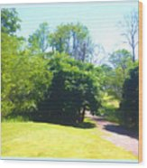 The Country Lane In Spring Time Wood Print