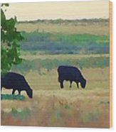 The Cows Next Door Wood Print