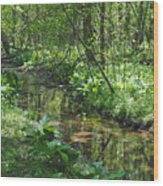 The Creek Wood Print