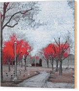 The Crimson Trees Wood Print