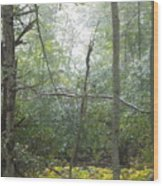 The Cross In The Woods Wood Print