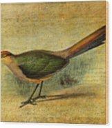 The Cuckoo's Note Wood Print