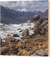 The Cuillin Mountains From Elgol Wood Print