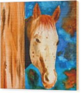The Curious Appaloosa Wood Print