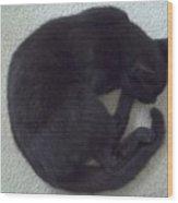 The Curled Black Cat Wood Print