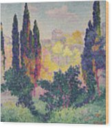 The Cypresses At Cagnes Wood Print by Henri-Edmond Cross